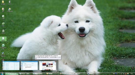 萨摩耶可爱狗狗壁纸 W7主题 =`ywd]7 =`ywd]7 萨摩耶犬以西伯利亚牧民族萨摩人而命名 ,一向被用来拉雪橇和看守驯鹿。萨摩耶犬以具有忍耐力与健壮的体格而闻名。此犬毛色很多,一般有黑色,黑白色,黑与黄褐色,最终以白色被毛品种占优势。 =`ywd]7 萨摩耶W7主题效果预览: =`ywd]7