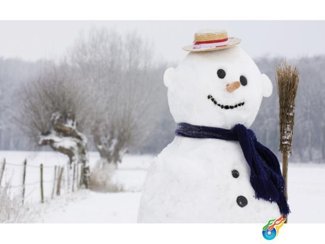 雪景图片自己做的动物